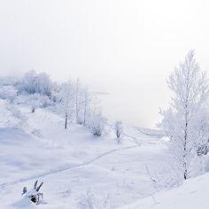 Winter landscape by oxygen2608