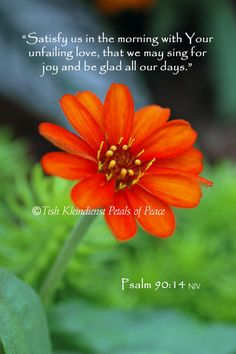 Psalm 9014 4 x 6 print Many sizes available for by PetalsOfPeace, $9.00