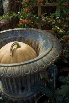 Image by Terrain Autumn Garden, Autumn Home, Autumn Decorating, Fall Decor, Gourds, Pumpkins, Garden Urns, Fall Planters, Shabby Vintage