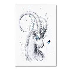 Trademark Fine Art 'Capricorn' Canvas Art by JoJoesArt