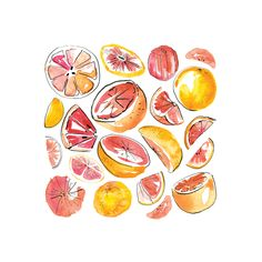 I painted Figs, Pink Grapefruit and Kiwi's using watecolour. I then added details with a dip pen and black ink. These paintings were then digitally composed with Adobe Photoshop. Watercolor Fruit, Fruit Painting, Pen And Watercolor, Watercolor Paintings, Fruit Logo, Food Artists, Fruit Illustration, Fruit Art, Easy Drawings