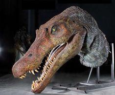 Jurassic Park 3 Spinosaurus animatronic insert head