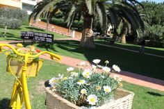 #yellow #bike #flowers at #Loano2Village Resort in #Loano #Liguria #Italy #Riviera #visitriviera