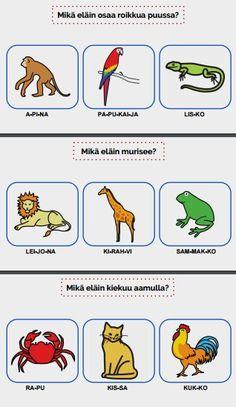 Tarinassa opitaan eri eläimistä, kuten mikä eläin asuu navetassa, osaa roikkua puussa tai mikä eläin on suurin.