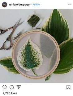 I saw so many beautiful hostas on my walk to the park with my son yesterday that I had to come home and stitch this leaf during his nap. Floral Embroidery Patterns, Embroidery Works, Creative Embroidery, Hand Embroidery Stitches, Modern Embroidery, Embroidery Hoop Art, Hand Embroidery Designs, Ribbon Embroidery, Diy Broderie