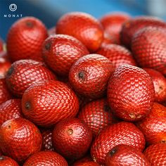 Buriti oil is extracted from the fruit of Africa's Moriche palm – also known as the Tree of Life. It is one of the the richest sources of beta-carotene on our planet, which moisturizes and nourishes skin and hair. Rejuveniqe Oil combines Buriti with 11 other rare oils to make the best age prevention product on the market. http://www.vip.mymonat.com #monat #hair #health #beauty