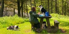 Fron Fawr Cottages, Boncath, Pembrokeshire, Wales. Just as you have a Welcome Tray upon arrival, so does your pooch! You will find a food and a water bowl, a feeding mat, a bed, doggy treats and some poop bags.