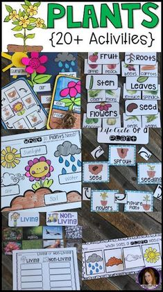 Plants {20  Activities} for Kindergarten.  The boys and girls will love this literacy and science based unit!  Kids will learn about plant life cycle, plant parts/jobs, parts of a plant we eat, types of plants and what plants need to live with writing, literacy and craft activities.
