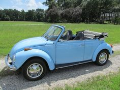 1973 VW Convertible Arlene still thinks i sold this our from under her.