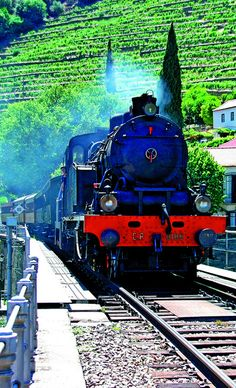 Historical Steam Train in the Douro Valley by Porto Convention and Visitors Bureau, via Flickr, Portugal   ..rh