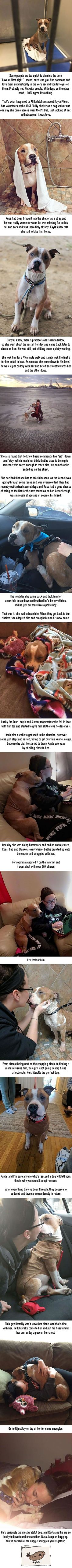 Woman adopts dog and it can't stop hugging her