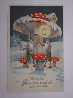 GREETINGS-MUSHROOMS-GERMANY-VF6-X74917