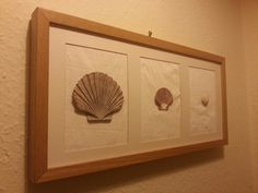 Shells I found on my honeymoon mounted on an ikea frame and a little crepe paper :)