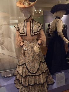 DAR Museum Early 1900s Day Dress