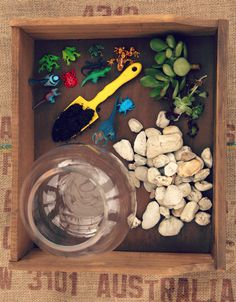 DIY Succulent Terrarium - want to make this!