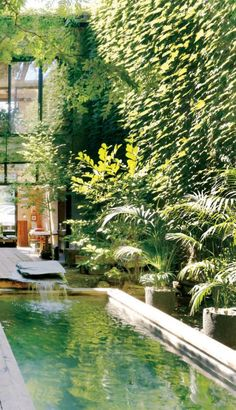 Green pool and waterfall feature in a Montreal courtyard. Angus Mcritchie