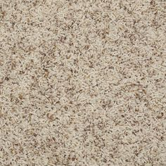Color: 00123 Pebble Q4532 Alamar (B) Shaw Anso Nylon Carpet Georgia Carpet Industries