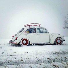 Beetle Bug, Vw Beetles, Hot Vw, Cool Bugs, Volkswagen Karmann Ghia, Vw Vintage, Volkswagen Bus, My Ride, Car Car