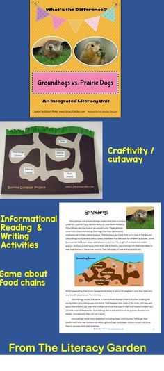 Two separate reading selections are provided that are the heart of this unit. You can use this information to write compare and contrast paragraphs as well as a variety of writing activities that are included.   Craftivity Create an underground burrow cutaway .  Game—CHOMP! On the Prairie Students will gain understanding of food webs   Working with Words Printable activities on the skills of compound words, and making words  This unit is also great for animal studies.