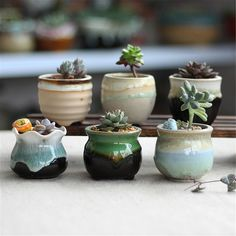 Ceramic Plant Flower Pot Succulent Flower Herb Planter Miniature Garden Bonsai Decorations - All For Garden Herb Planters, Succulent Pots, Planter Pots, Succulents, Ceramic Flowers, Ceramic Planters, Mini Vasos, Bonsai Garden, Cactus Y Suculentas