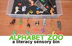 This is a simple alphabet zoo sensory bin – part sensory, part literacy – that is perfect for little learners to play with while working on their ABCs. Zoo Activities, Alphabet Activities, Toddler Activities, F Alphabet, Animal Alphabet, Preschool Zoo Theme, Toddler Preschool, Sensory Bins, Sensory Play