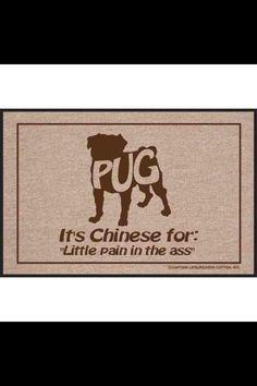 Sometimes very true! But we love 'em :)