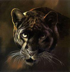 Pollyanna Pickering | Мир дикой природы. Обсуждение на LiveInternet - Российский Сервис Онлайн-Дневников