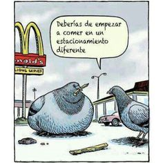 Comida chatarra (comida rápida de McDonalds)////You really need to start eating at a different establishment.