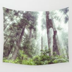 Dreamy Forest Fog Wall Tapestry