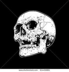 Vector skull artwork.Human skull on isolated black background.