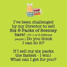 Scentsy bars and warmers.