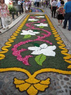 Alfombras decorativas instaladas en las calles de Castropol para  la primera edición del Festival de la Ostra de Castropol 2014. #Ostras #oyster #FestivaldelaostraCastropol