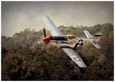 Beautiful P-51 Mustang