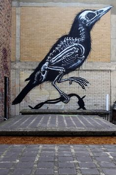 street art by ROA - x-ray bird