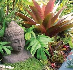 Balinese Style Plants and Statues. Look at ground cover also Balinese Style Plants and Statues. Look at ground cover also Asian Garden, Balinese Garden, Bali Garden, Garden, Buddha Garden, Tropical Backyard, Plants, Ground Cover, Tropical Landscaping