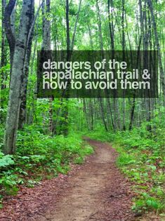 Dangers of the Appalachian Trail and How to Avoid Them - Mountains with Megan Thru Hiking, Camping And Hiking, Hiking The Appalachian Trail, Appalachian Mountains, Hiking Usa, Hiking Places, Family Camping, Pacific Crest Trail, Pacific Coast