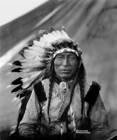 Iron Tail | www.American-Tribes.com