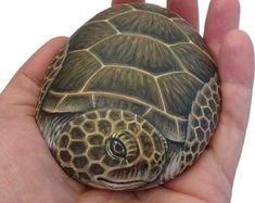 Turtle Painting, Pebble Painting, Stone Painting, Rock Painting, Painted Rock Animals, Hand Painted Rocks, Painted Stones, Painted Turtles, Turtle Painted Rocks