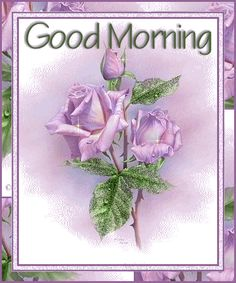 Good Morning Purple Rose photo GoodMorningPurpleRose.gif