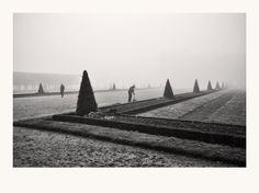 gardener in the mist by Marjolein M.