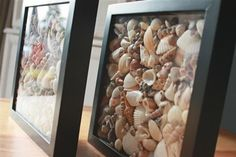 Simple Seashell Shadowboxes...  I JUST this past weekend got out my HUGE seashell collection and wondered what I could possibly do with them... here we go!!!