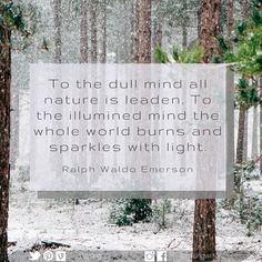 To the dull mind all nature is leaden. To the illumined mind the whole world burns and sparkles with light. Ralph Waldo Emerson, All Nature, Sparkles, Burns, Mindfulness, Lettering, World, Quotes, The World