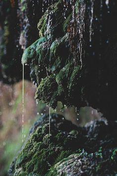 indigo_prophecy/die-landschaften/