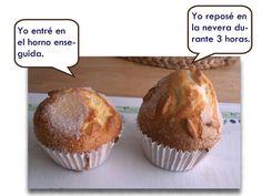 MAGDALENAS DE XAVIER BARRIGA : Mis dulces preferidos