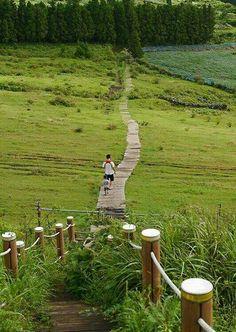Jeju island, South Korea -- I want to go back to visit Jeju Island