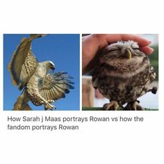 True but we still know that Rowan is a B.A. (a lovable one)