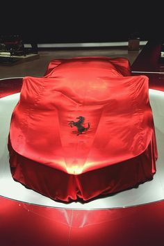 ~Ferrari Silk Car Cover | The House of Beccaria#