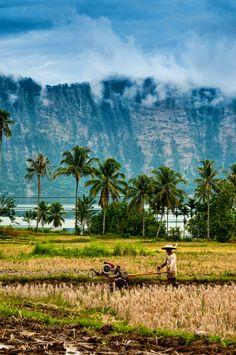 Sumatra, Indonésie