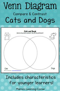 bie a simple blank venn diagram to help your students  cats and dogs venn diagram worksheet