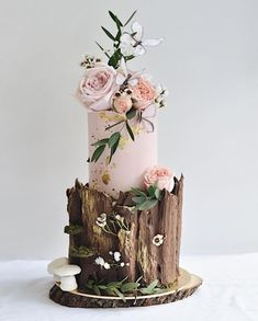 Enchanted forest cake in blush for Qian Yi! 🌳🕊 Enchanted forest cake in blush for Qian Yi! Beautiful Wedding Cakes, Gorgeous Cakes, Pretty Cakes, Wedding Cake Rustic, Rustic Cake, Cake Wedding, Whimsical Wedding, Forest Wedding Cakes, Wedding Cupcakes